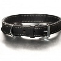 bridle-leather-collar-black