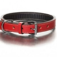 the-simply-red-collar