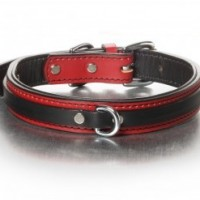 the-tucker-collar-black-on-red